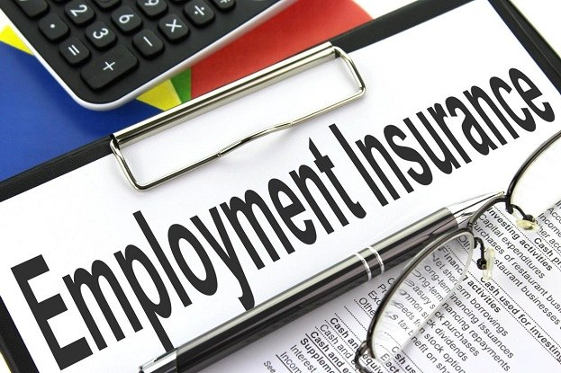 Image result for Employment Insurance